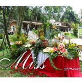 Cerimoniais e decora��es Miss Daisy