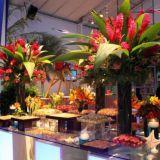 Aguape decora��o flores