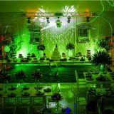 Elegancy Festas e Eventos