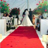 Buffet De Jantar Para Casamento () -