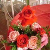 *Suh Flores * Desinger Floral *