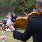 Dpl Eventos Musicais
