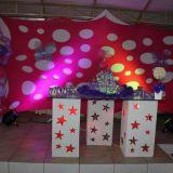 Decora��es para festas e artesanatos