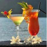 Daroal Bartender E Barista S�o Jos�