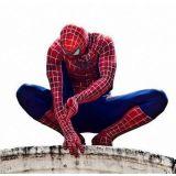 Homem Aranha de Olinda - Oficial