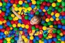 Fest Brinquedos Infl�veis