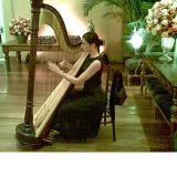 O Som Da Harpa Sinfonica No Seu Casamento