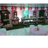 Casa Da Criança Festas Infantis