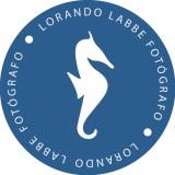 Lorando Labbe - Fotografia