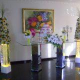 Salão Para Festas Carmo Itaquera Sp