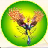 Phoenix Produções
