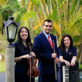 Grupo Repertório - Música ao vivo para casamentos.