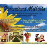 Floricultura Abelhinha flores e eventos