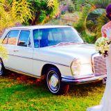 Transporte para Casamentos