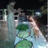 Churrasco á Gaúcha em sua Festa Casamento 2014