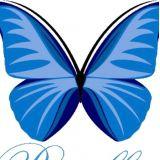 Papillon Eventos