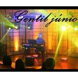 Gentil Júnior / a música da sua festa