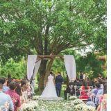 Noivas de Plantão Assessoria e Cerimonial
