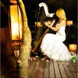 Cely Rodrigues Música Com Harpa