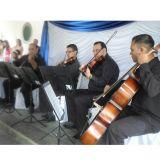 Músicos Casamento em Suzano, Arujá, Mogi e região