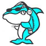 a Tubarão 2.000