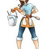 Dona Nice Serviços de Limpeza