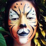 Stel´arte Pintura Facial Campo Grande MS