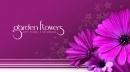 Garden Flowers - Arte Floral e Decoração