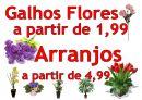 Lila Floricultura