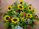 Recanto das Flores Itap.da Serra.