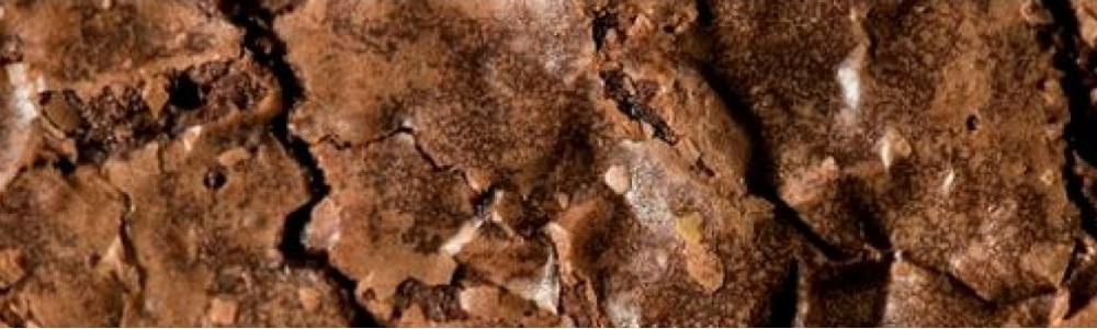 Brownie 241