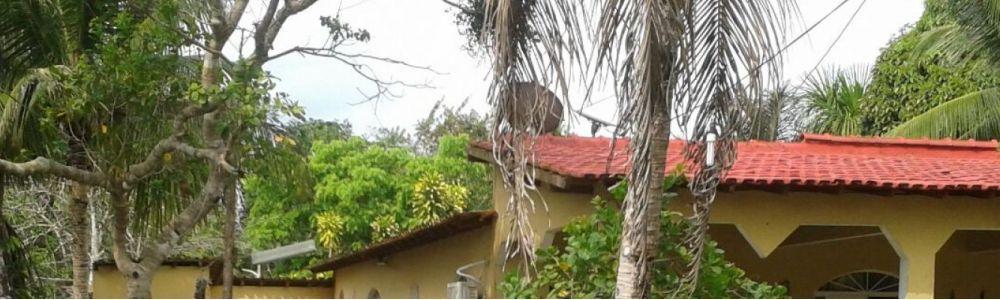 Alugo Chácara próximo a Manaus