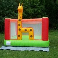 Pula Pula Girafa 3x3