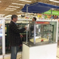 Barraquinha Pipocas ação  Carrefour