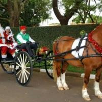 Chegada do Papai Noel de carroagem