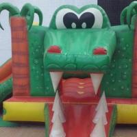 Crocodilo 2 em 1 multi atividades (pula pula e escorrega)crianças de 01 a 10 anos .