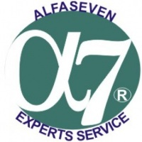 ALFASEVEN EXPERTS