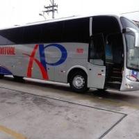 ônibus executivo G6 completo