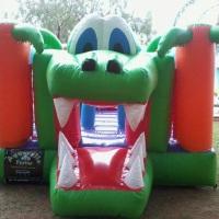 Pula pula jacaré uma ótima opção para criança pular e escorregar .