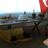 Decoração Mesa Bolo e Salão de Festas