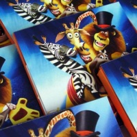 Festa Madagascar