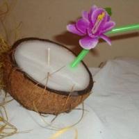 Vela Côco - Festas de Luau, praianas.