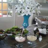 Saladas, molhos para saladas e molho branco e molho ao sugo ( Molho feito com tomate fresco e extrat