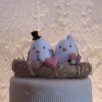 Topo de bolo passarinhos no ninho - em biscuit