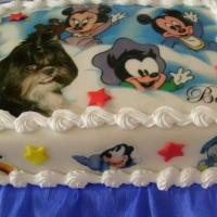 Aplicação  com foto bolo