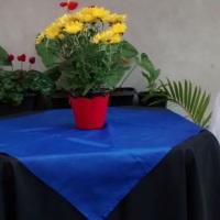 Toalha com cobre azul