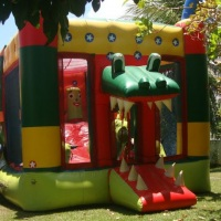 Kid Play Jacaré