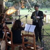 Quarteto de cordas em casamento ao ar livre. Porto Alegre, RS