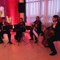 Quarteto de cordas para recepção de convidados em evento. Canoas, RS