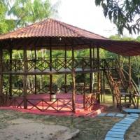 A cabana do Tarzan é um ótimo lugar para dormir em rêde e ver pássaros e alguns animais comendo frut